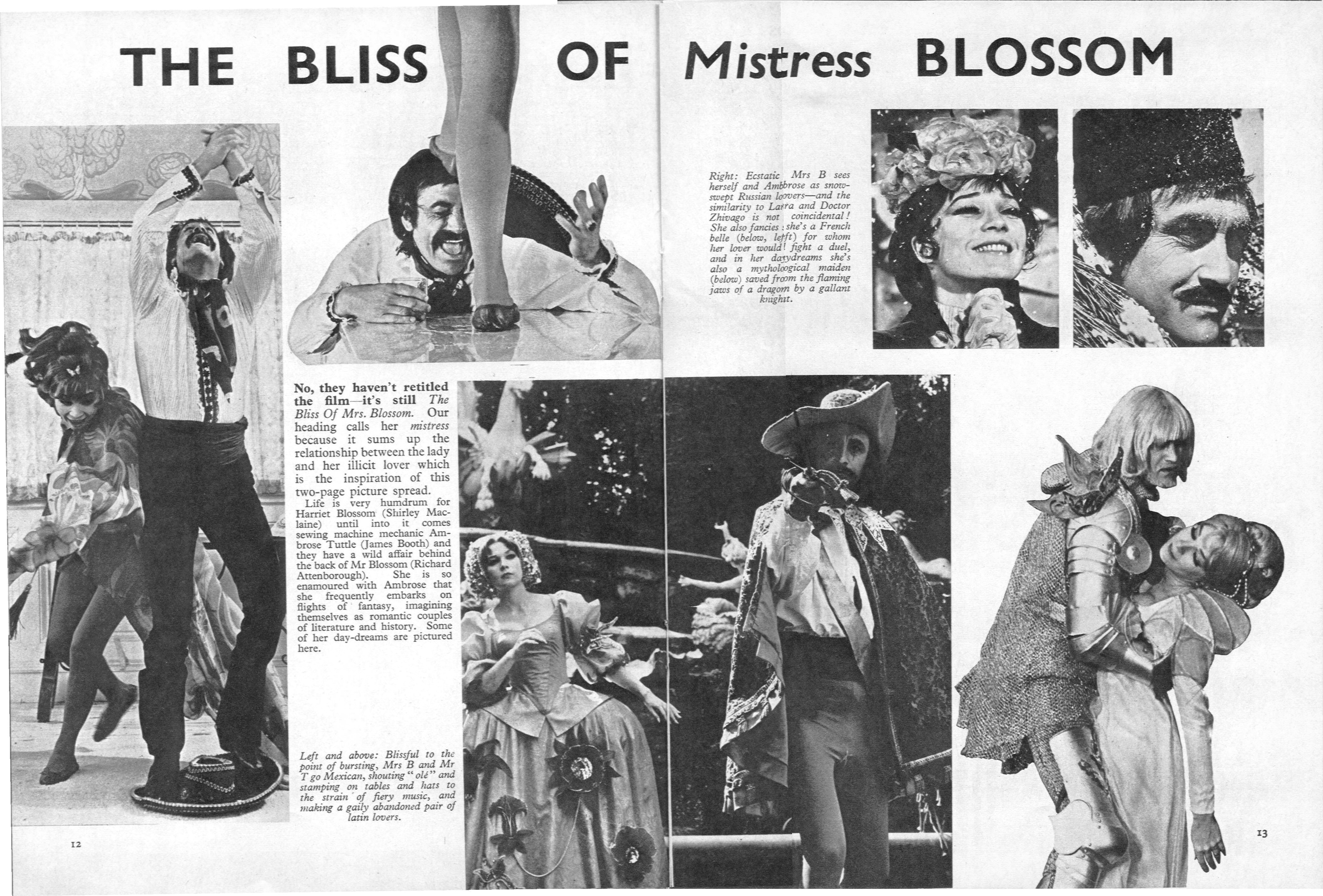 The Bliss of Mrs. Blossom movie